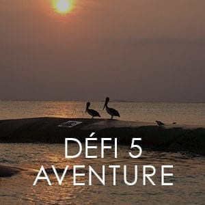 https://www.lavitrinecreative.com/wp-content/uploads/2018/11/defi5-aventure-300x300.jpg