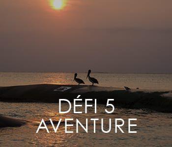 https://www.lavitrinecreative.com/wp-content/uploads/2018/11/defi5-aventure-350x300.jpg