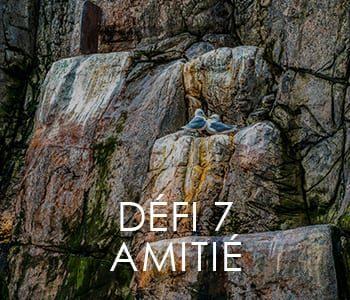 https://www.lavitrinecreative.com/wp-content/uploads/2018/11/defi7-amitie-350x300.jpg