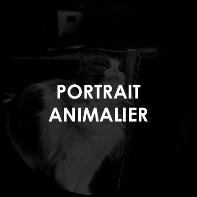 https://www.lavitrinecreative.com/wp-content/uploads/2021/04/cercle_LVC_services_2021_ANIMALIER-400x400.png